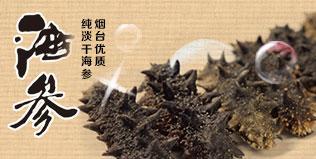 地理标志产品——烟台纯淡干海参 500g