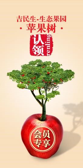吉民生果树认领