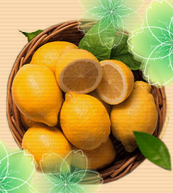 吉民生 安岳县柠檬
